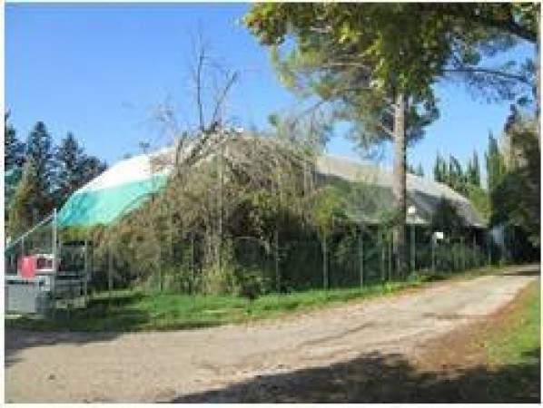 Locale Commerciale in Vendita a Terni Rif.6102936