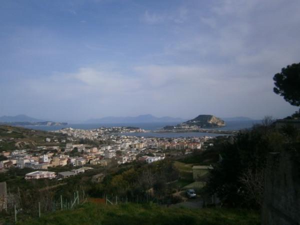 Bilocale Monte di Procida Via Pietro Colletta 1