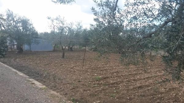Bilocale Bisceglie Via Andria 2
