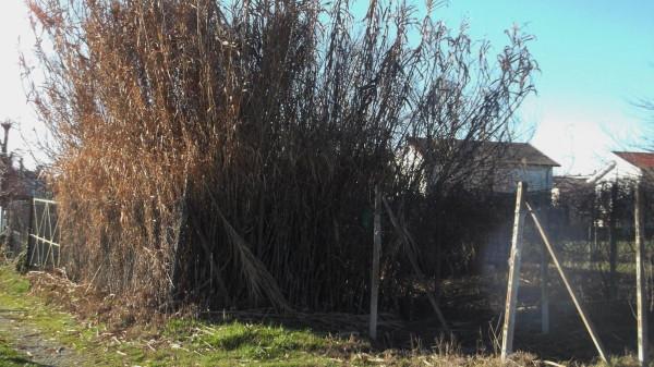 Terreno Edificabile Residenziale in Vendita a Broni