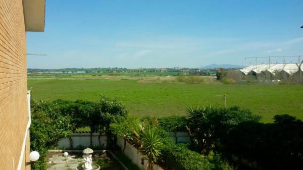 Bilocale Pomezia Via Casablanca 7