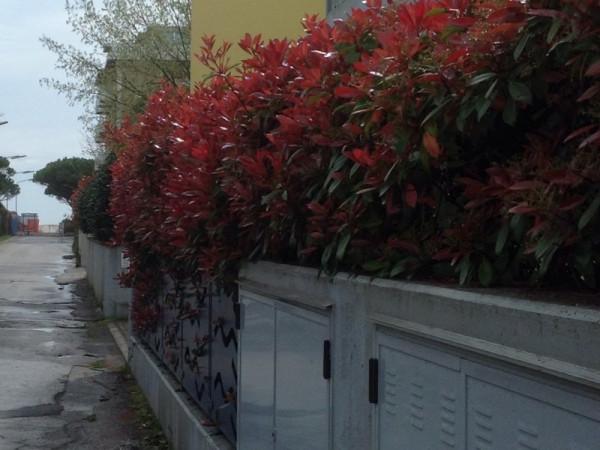 Bilocale Jesolo Via Galileo Galilei 30016 Lido Di Jesolo Ve Italia 8