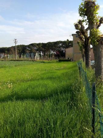 Terreno Edificabile Residenziale in vendita a Brisighella, 9999 locali, prezzo € 90.000 | Cambio Casa.it