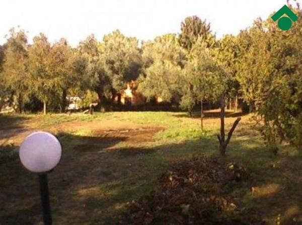 Bilocale Palestrina Via Gran Sasso 11