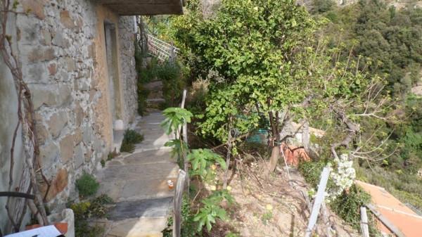 Bilocale Riomaggiore Strada Provinciale 32 6