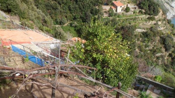 Bilocale Riomaggiore Strada Provinciale 32 9