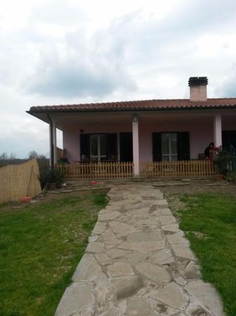 Villa-Villetta Affitto Vitorchiano