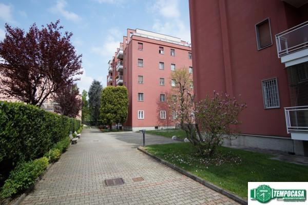 Appartamento in affitto a Peschiera Borromeo, 3 locali, prezzo € 850 | Cambio Casa.it