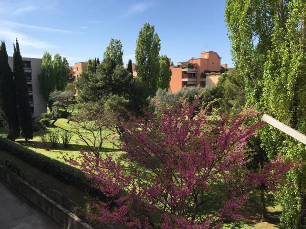 Bilocale Senigallia Via Giuseppe Verdi 1