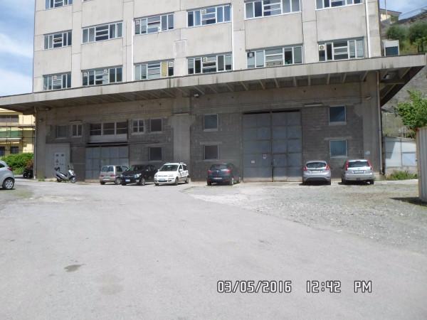 Capannone in Affitto a Genova Semicentro Nord: 3 locali, 400 mq