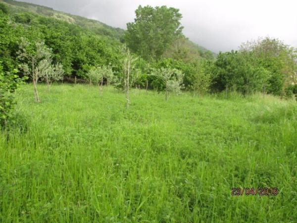 Terreno Agricolo in vendita a Montoro, 9999 locali, prezzo € 22.000 | Cambio Casa.it