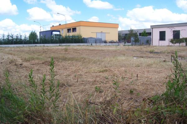 Terreno Edificabile Artigianale in vendita a Molinella, 9999 locali, prezzo € 75.000   Cambio Casa.it