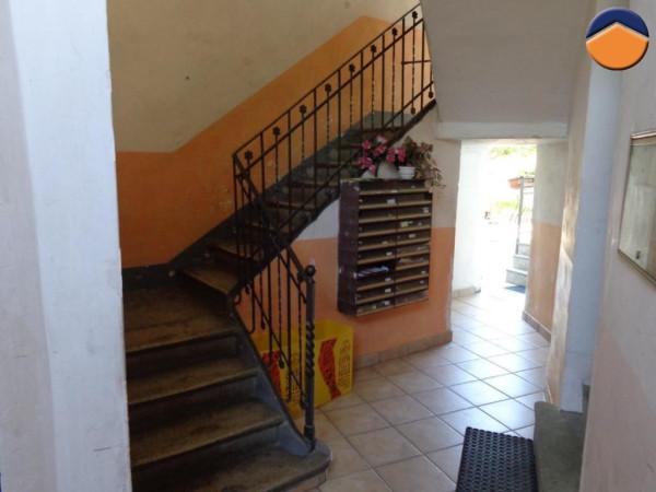 Bilocale Torino Via Andrea Cesalpino 10