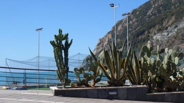 Bilocale Monterosso al Mare Via Molinelli 10