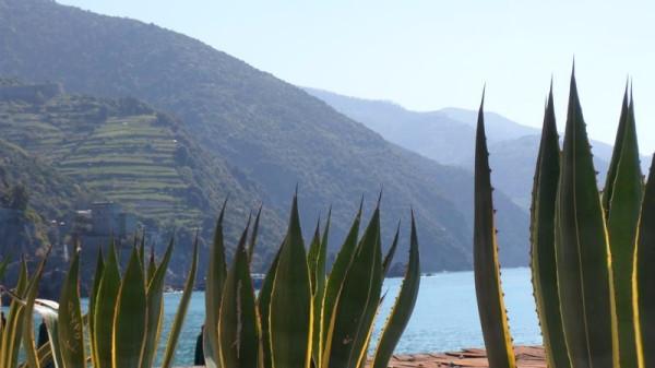 Bilocale Monterosso al Mare Via Molinelli 13