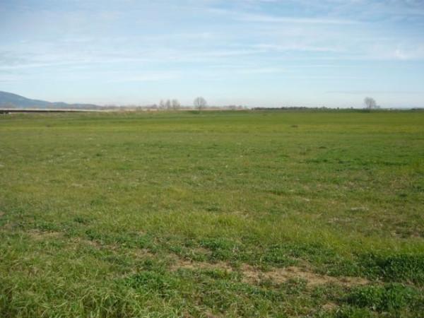 Terreno Edificabile Residenziale in vendita a Carpi, 9999 locali, prezzo € 750.000 | Cambio Casa.it