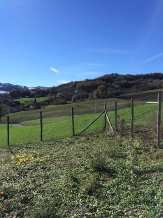 Terreno residenziale in Vendita a Piozzano Centro: 1600 mq