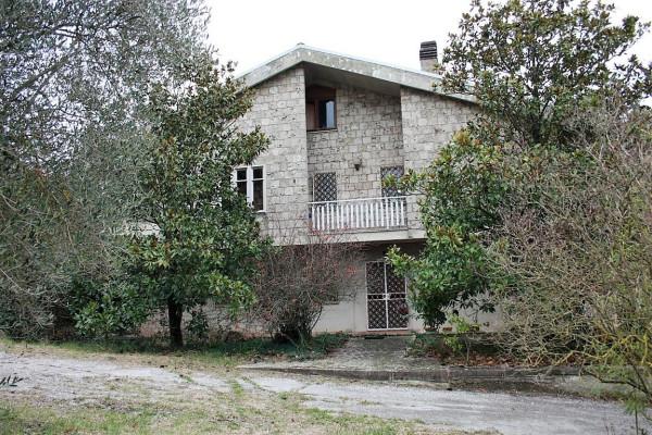 Villa in Vendita a Amelia Periferia: 5 locali, 455 mq