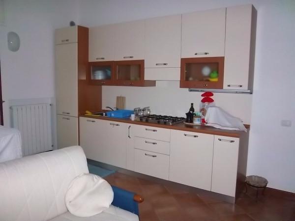 Appartamento in affitto a Cremona, 1 locali, prezzo € 350 | Cambio Casa.it