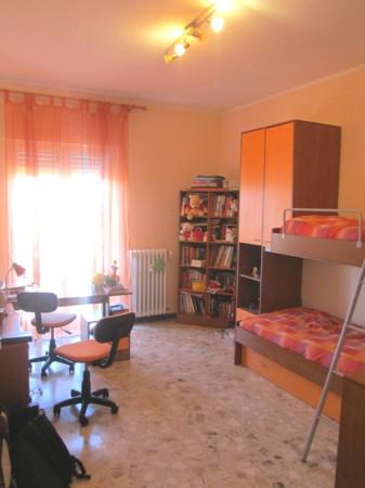 Appartamento, via conte rosso, Centro città, Vendita - Campobasso (Campobasso)