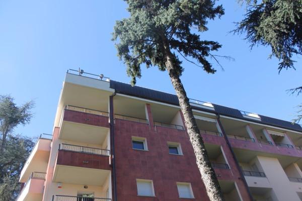 Bilocale Legnano Viale Luigi Cadorna 5