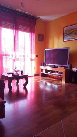 Bilocale San Vittore Olona Via Divisione Sforzesca 5
