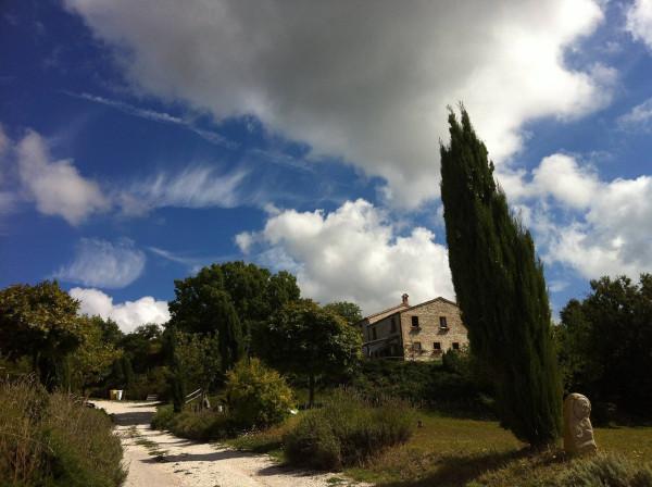 Rustico-casale Vendita Sassoferrato