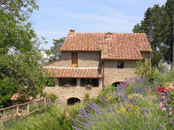 Rustico in Vendita a Arezzo: 5 locali, 470 mq