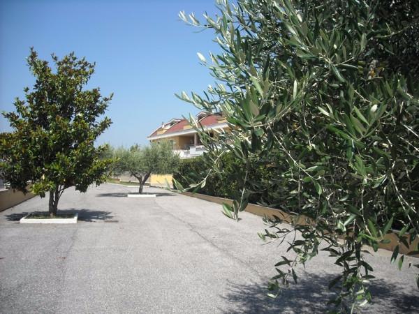 Bilocale Guidonia Montecelio Via Delle Genziane 3