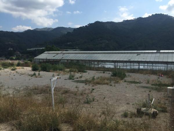Terreno Agricolo in vendita a Camporosso, 9999 locali, prezzo € 230.000 | Cambio Casa.it