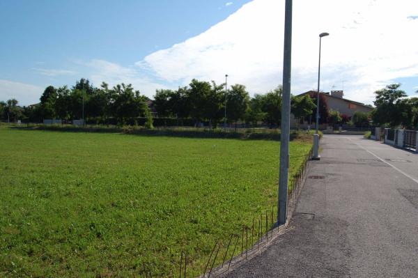 Terreno Edificabile Residenziale in Vendita a Carmignano di Brenta