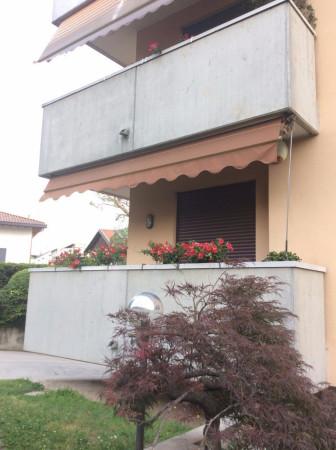 Bilocale Legnano Via Ortigara 3
