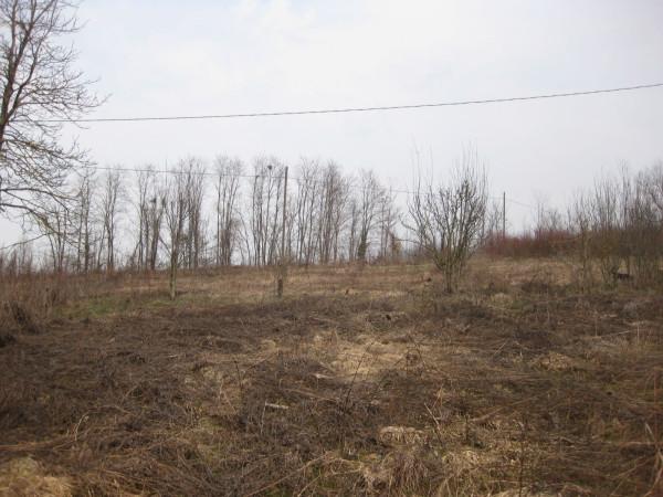 Terreno Agricolo in vendita a Cherasco, 9999 locali, prezzo € 20.000 | Cambio Casa.it