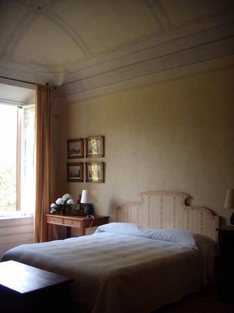 Appartamento in Affitto a Vecchiano Periferia: 3 locali, 220 mq