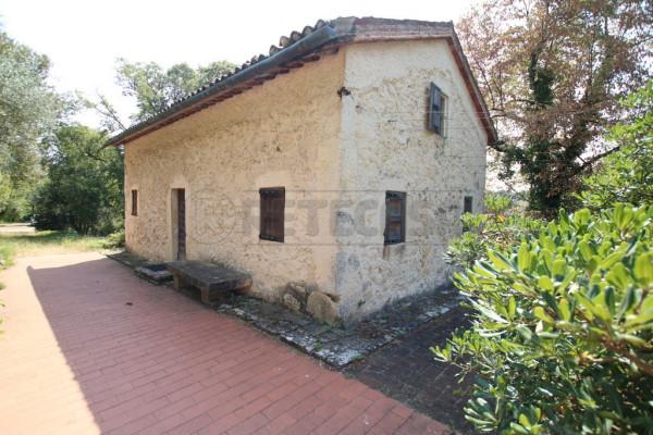 Rustico-casale Altro in Affitto a Arcugnano