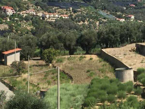 Terreno Edificabile Residenziale in vendita a Bordighera, 9999 locali, prezzo € 165.000 | Cambio Casa.it