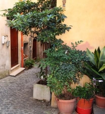 Bilocale Marino Via San Giovanni 2