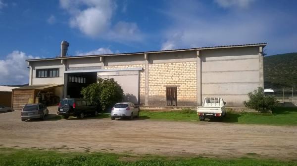 Laboratorio in vendita a Narbolia, 4 locali, prezzo € 275.000 | Cambio Casa.it