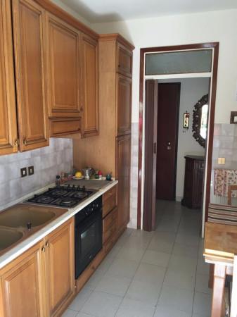 Appartamento in Vendita a Pisa Periferia Nord: 3 locali, 60 mq