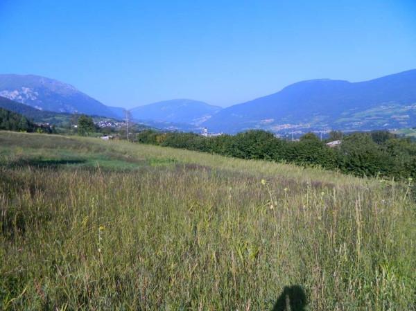 Terreno residenziale in Vendita a Bleggio Superiore Periferia: 4072 mq