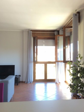 Bilocale Canegrate Via Livigno 2