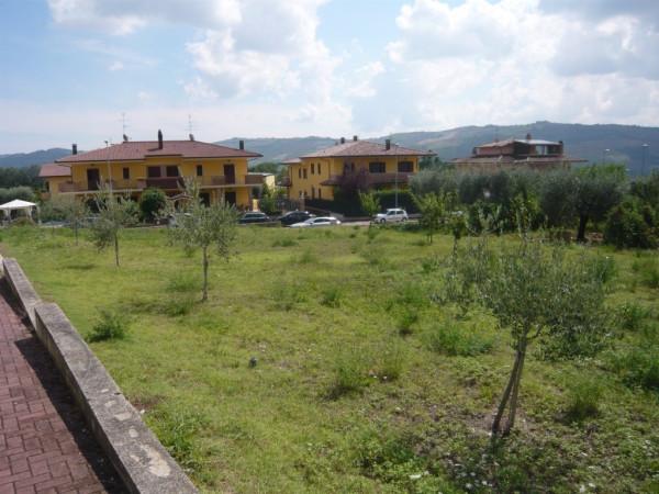 Terreno Edificabile Residenziale in vendita a Colli del Tronto, 9999 locali, prezzo € 150.000   Cambio Casa.it