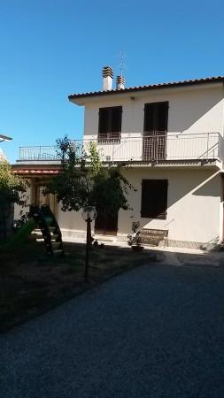 Bilocale Lucca Via Stefano Tofanelli 3