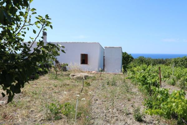 Terreno Agricolo in vendita a Sorso, 9999 locali, prezzo € 120.000 | Cambio Casa.it