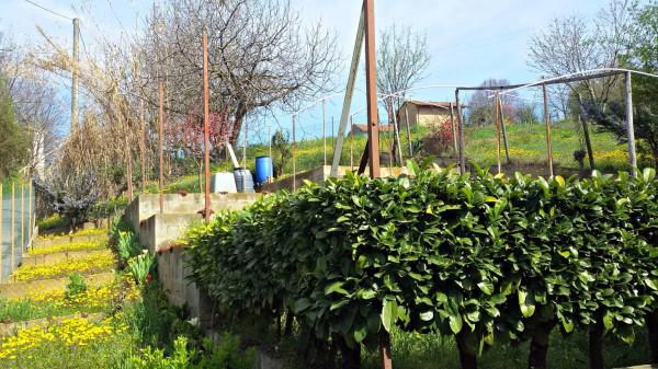 Bilocale Costigliole d Asti Frazione Loreto 12