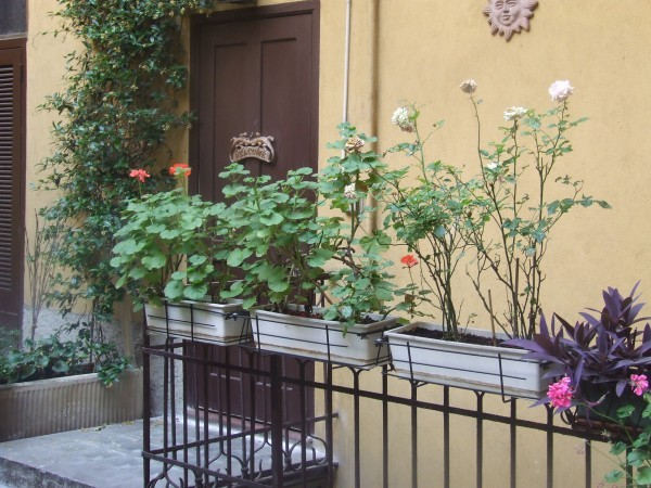 Bilocale Milano Via Nino Oxilia 6