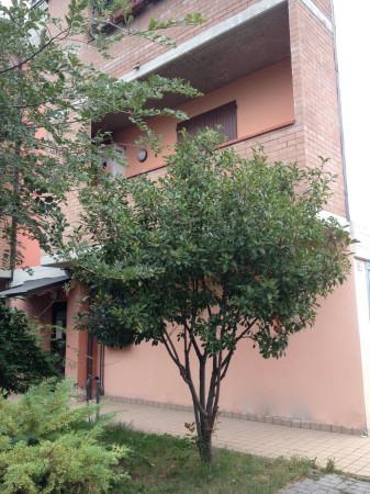 Bilocale Castelfranco Emilia  1