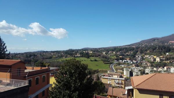 Bilocale Velletri Via Paolina 8