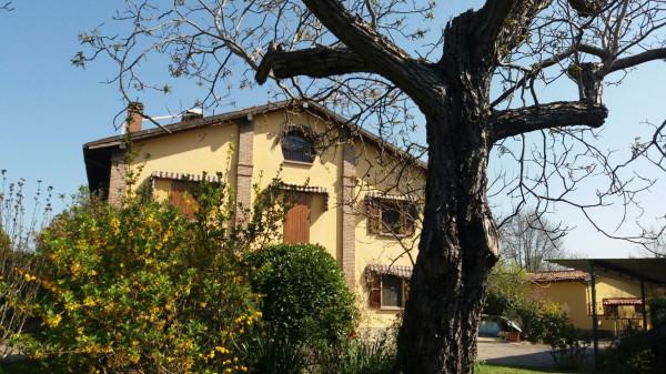 bologna vendita quart: san vitale  la-galleria-immobiliare