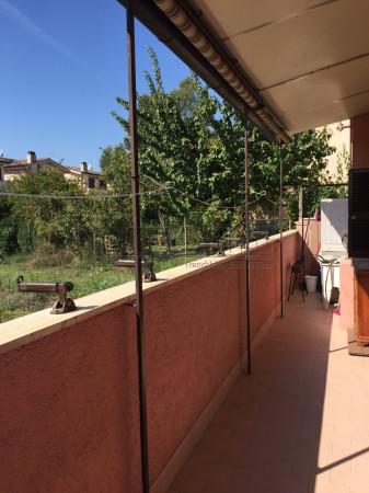 Bilocale Cerveteri Via Foggia 12